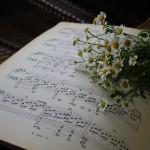 遊びから学ぶピアノレッスン